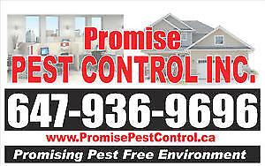PROMISE PEST CONTROL - 647 936 9696 - HAMILTON  LOWEST PRICE