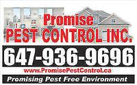 PROMISE PEST CONTROL - 647 936 9696 - HAMILTON AREA BEST PRICE