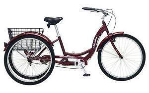 Think, that best three wheeled bicycle adult