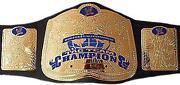 ECW Replica Belt