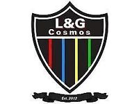 Second Team Manager Wanted (L&G Cosmos FC)