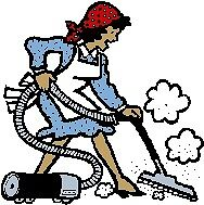 CLEANING SERVICES (house, shop, stores, etc.)
