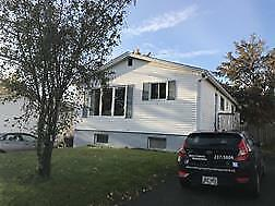 1A Bannister St – Freshly Painted 1 Bdrm in Mount Pearl