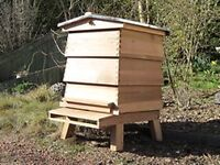Allotment, orchard, woodland, farmland wanted for beekeeping