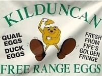 Delivery driver for egg producer in East Fife. 4 days per week inc 1 day at weekend