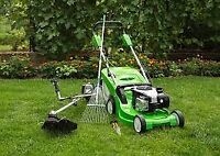 Spring clean-up and yard tidy-up