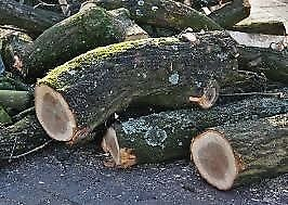 Firewood for sale. Logs