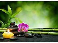 Massage Treatments with Polish Healing Hands