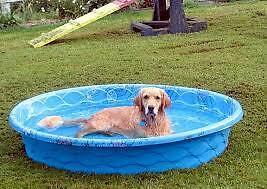 Looking for a cheap or possibly free plastic kiddie pool
