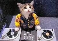 DJ pour vos Party's