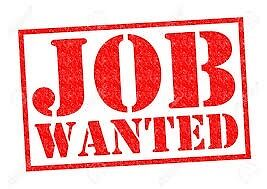 WANTED: LOOKING FOR A ANIMAL CARE APPRENTICESHIP - WIDNES OR SURROUNDING AREAS.