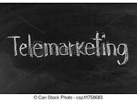 Telemarketer (Afternoon Campaign)