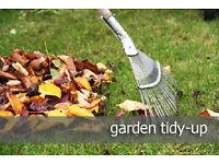 gardener -winter tidy ups/power washing /fence painting /weeding /pruning /chipping