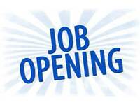 Sales Assistant - Trainee Team Leader £17,000 - £23,000 OTE
