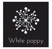 white poppy web design and seo, guarenteed page 1 of google