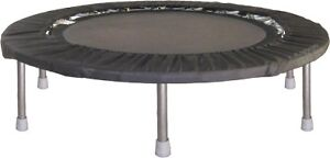 WANTED! mini trampoline/rebounder