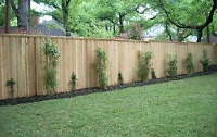 Wooden Fence Construction and Repair