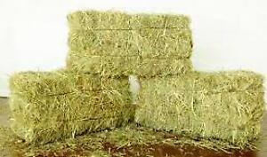 Horse Hay - Small Square Bales for Sale