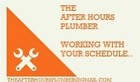 Service Plumber - Small Jobs!!