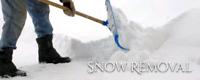 Cheap Snow removal Trenton