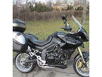 TRIUMPH TIGER 1050 - LOW MILEAGE - PRIVATE BUYER ASAP