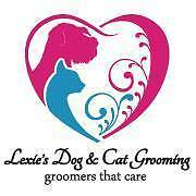 Cat Grooming?! Why?! Beeliar Cockburn Area Preview