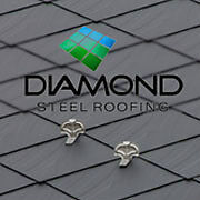 Discounted 30% OFF Diamond Steel end of the line paint series