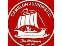 Camelon Junior's Players wanted 2002