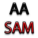 AA Sam Ltd