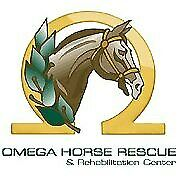 Omega Horse Rescue and Rehabilitation Center