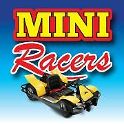 Business For Sale | Electric Go-Karting | Lucrative Opportunity Underwood Logan Area Preview