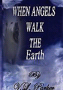 When Angels Walk the Earth by VL. Parker