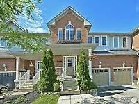 Houses/Condos for Rent in Markham-Vaughan-Richmond Hill