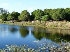 Productive Hogarth Range Macadamia Farm Kyogle Kyogle Area Preview