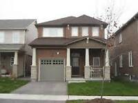 Newer Single Detached Homes From 389,900.00