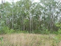 VACANT BUSHLAND BLOCK - 726 ACRES - SHANNONBROOK Kyogle Kyogle Area Preview