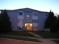 READY TO RENT 2 BDRM EVERYTHING INCLUDED $850 KIDS & DOGS