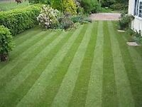 GRASS CUTTING & GARDEN maintenance SERVICES MOST OF GLASGOW COVERED PLZ TEXT FOR INFO