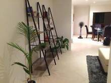 Single or double room available in Scarborough beach Scarborough Stirling Area Preview
