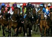 Monster HORSE RACING system, Turn £100 into £10,000