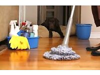 FULL TIME DOMESTIC CLEANER AVAILABLE