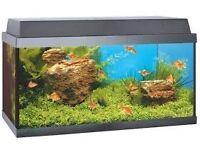 Juwel Korall 60 Tropical (54 litre) aquarium + light, filter, heater AND stand