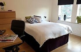 Amazing Double Room is Available in St Johns Wood Central London, NW8