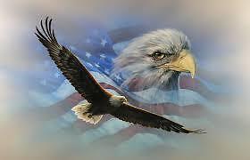 eagle8484 THRIFTY EAGLE
