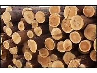 Firewood -cordwood and discs available free to collector or can deliver if local to Ross