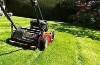 Lawn cutting - one time or contract available