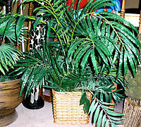 Pier 1 Large decorative plant, artificial  , approx 38 inches ta
