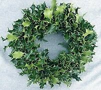 Real holly and moss wreaths , I sell wholesale or invidual, also sell moss bases