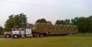 NEED TO HIRE FLATBED TRAILER TO HAUL HAY