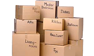 2 Fast removals service  $25 per half hour Blacktown Blacktown Area Preview